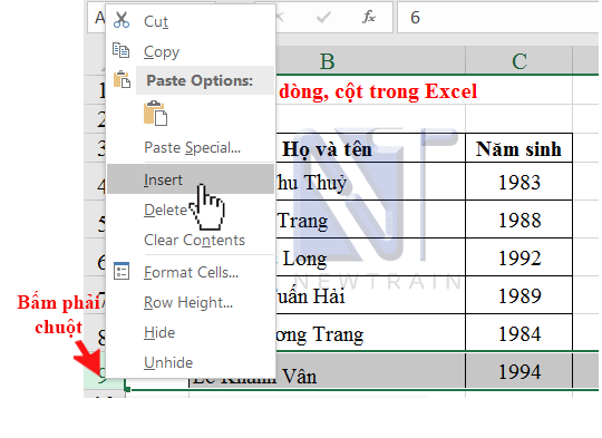 them-hang-trong-excel
