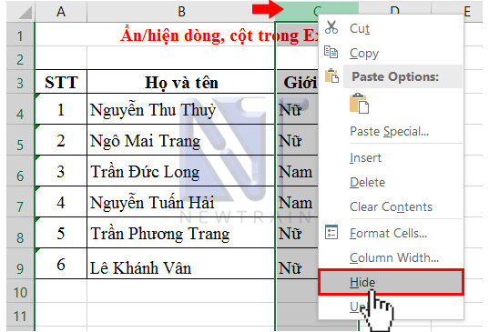 an-hien-dong-cot-trong-excel