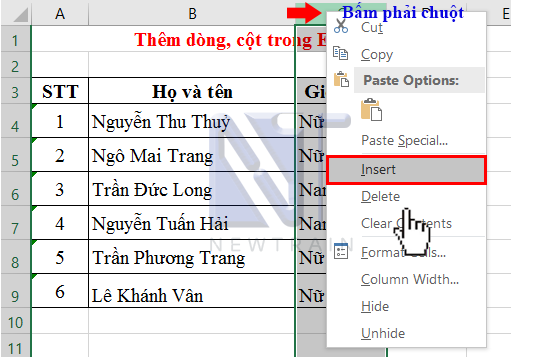 cach-2-them-dong-cot-trong-excel
